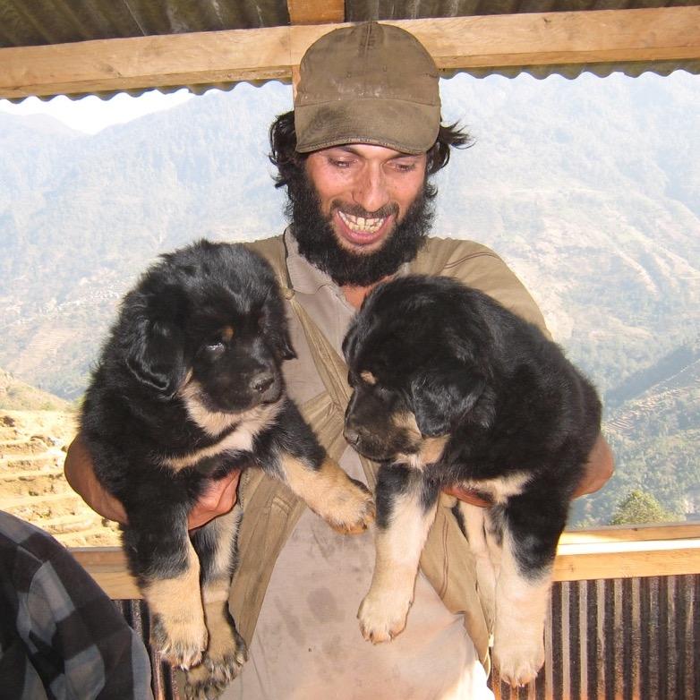 牧羊犬の子犬 2007/08 デウラリ・トレッキング
