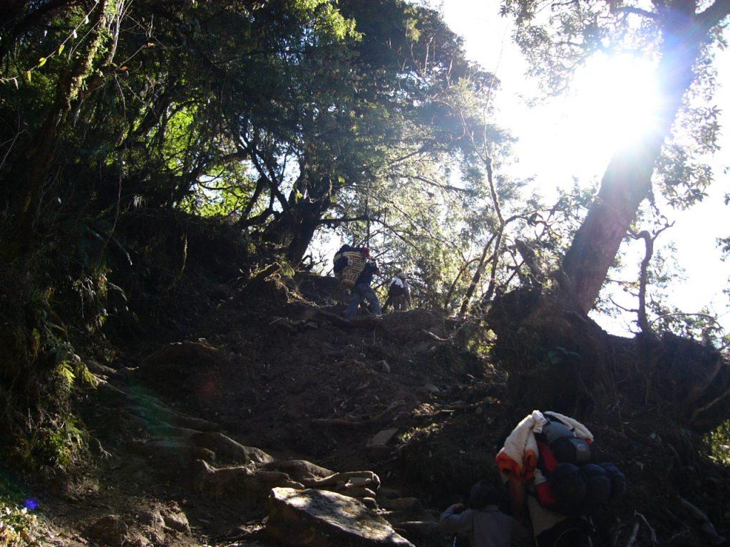 林の中を進む 2007/08 デウラリ・トレッキング