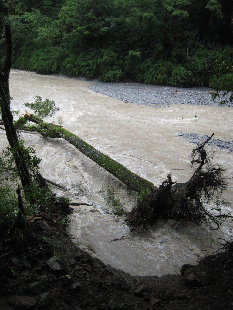 立木が流れていた 2008 ランタン・トレッキング