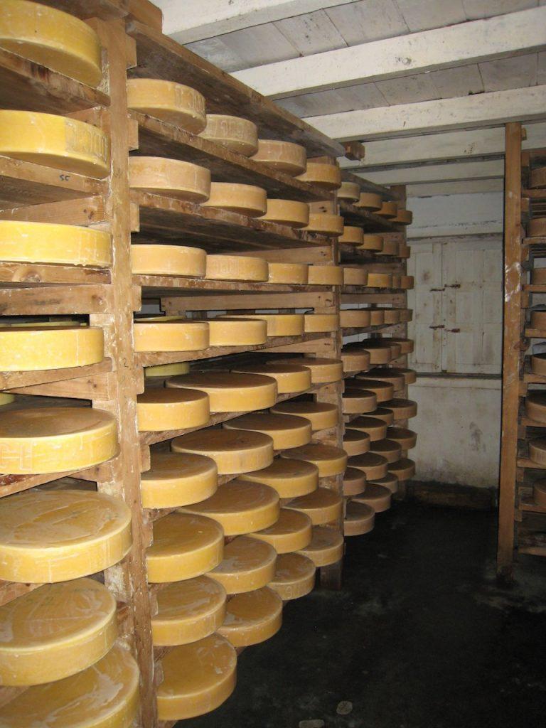 熟成中のチーズ、一つ5kgから9kg 2008 ランタン・トレッキング