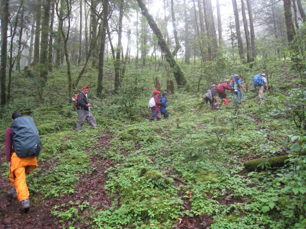ひたすら登り続ける 2008 ランタン・トレッキング