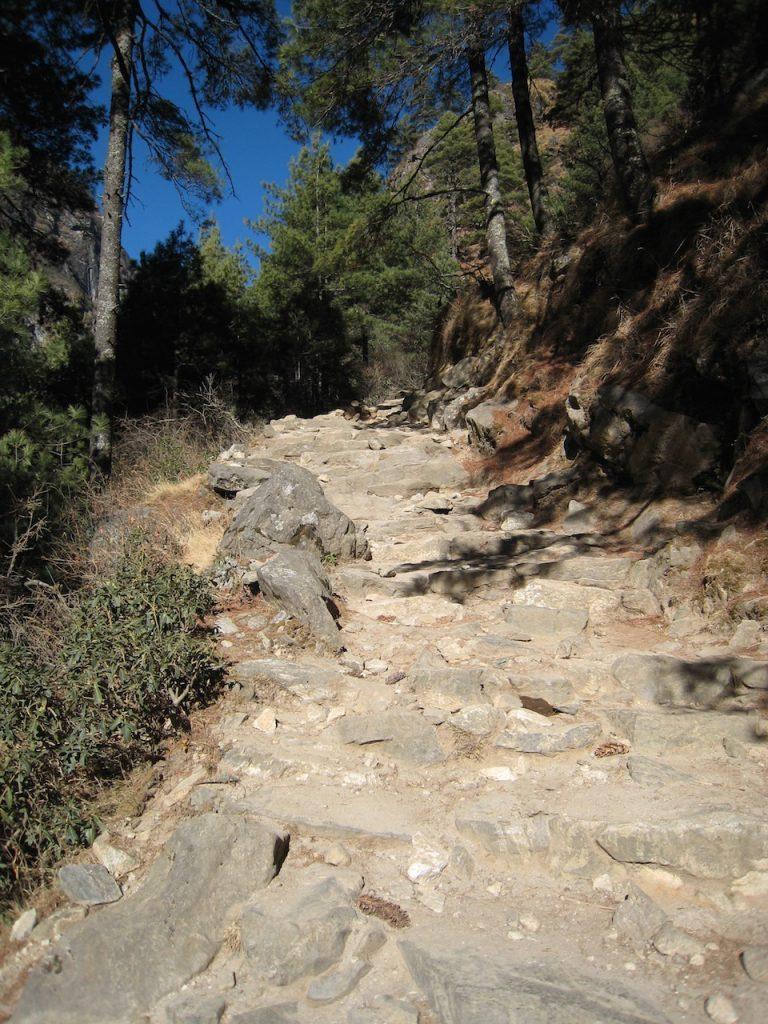 往路で苦労した坂 2009 ナムチェ・バザール・トレッキング