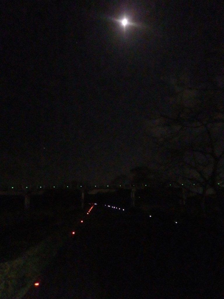 素敵な夜のリバティ (2015BRM328井川300km)