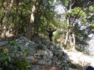 元気ある 藤原岳 -2013年4月28日