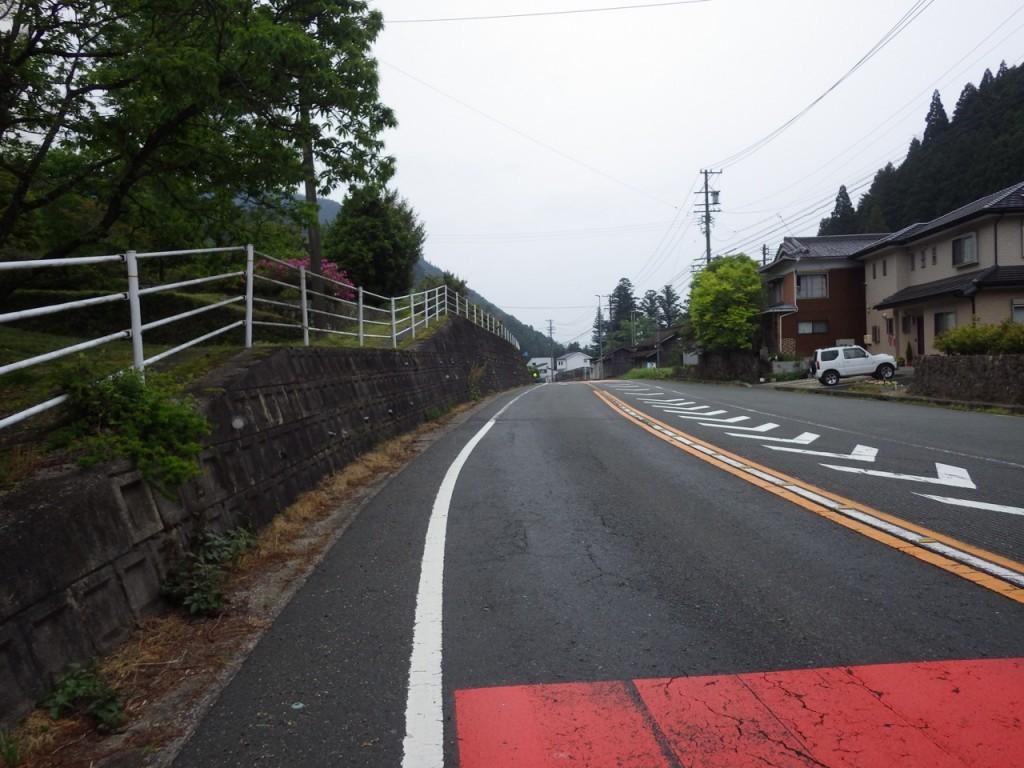 路面はややウェット (2015BRM509神奈川600興津)