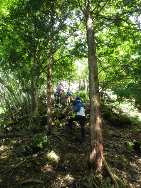 金山尾根を登る 2014年8月19日