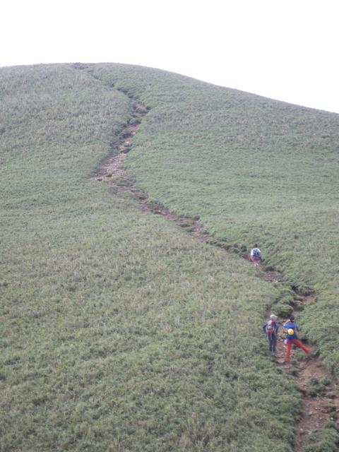 頂上手前の登山道 2014年8月19日