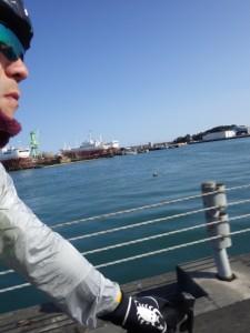 海沿いを西に BRM104静岡200km (2015年1月4日)