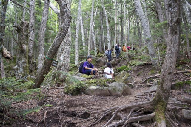 ひたすら登る 2010年8月8日