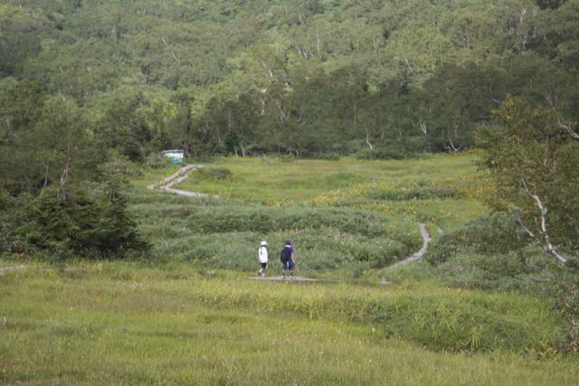 栂池自然園 2010年8月29日