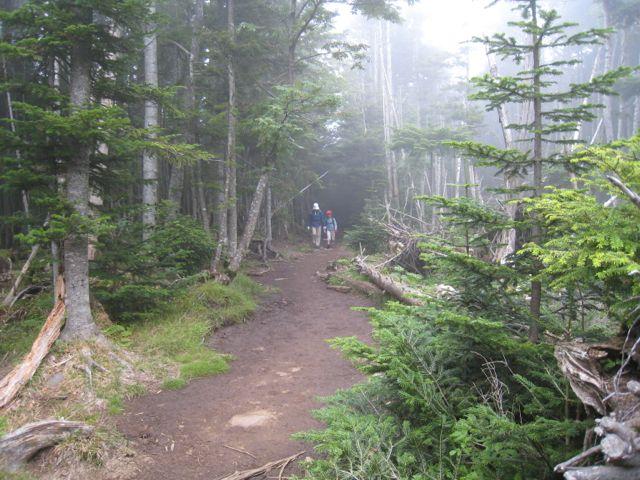 霧の中を進む 東天狗岳 (八ヶ岳) 2009年8月30日