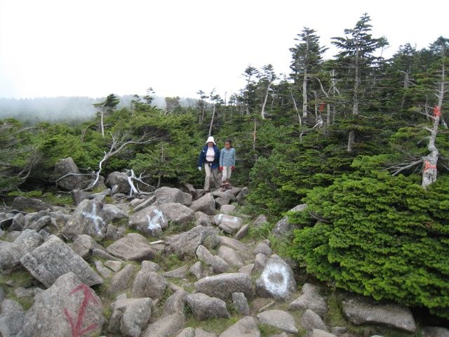 岩場を進む 東天狗岳 (八ヶ岳) 2009年8月30日
