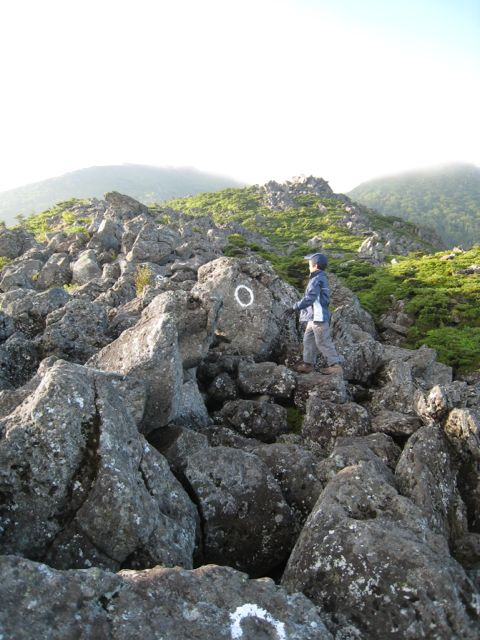 東天狗岳に登る 東天狗岳 (八ヶ岳) 2009年8月30日