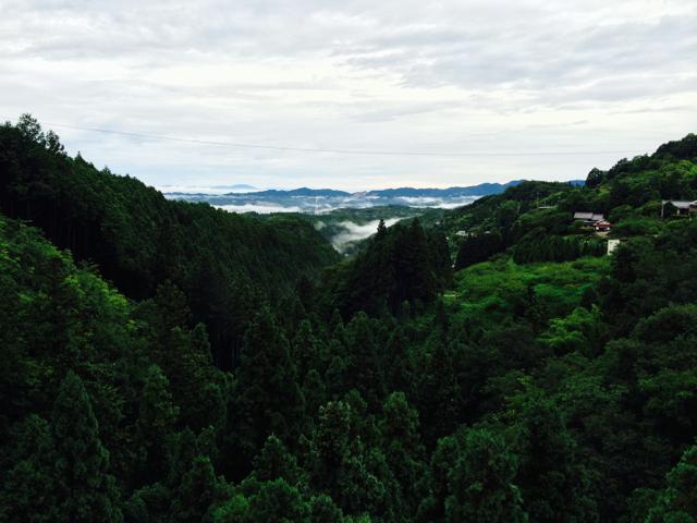 朝になり麓のまちが見えた 2014 BRM802近畿300km松阪