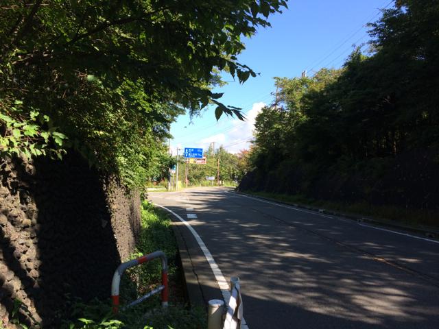 籠坂峠 BRM914神奈川400km (2014年9月14日)