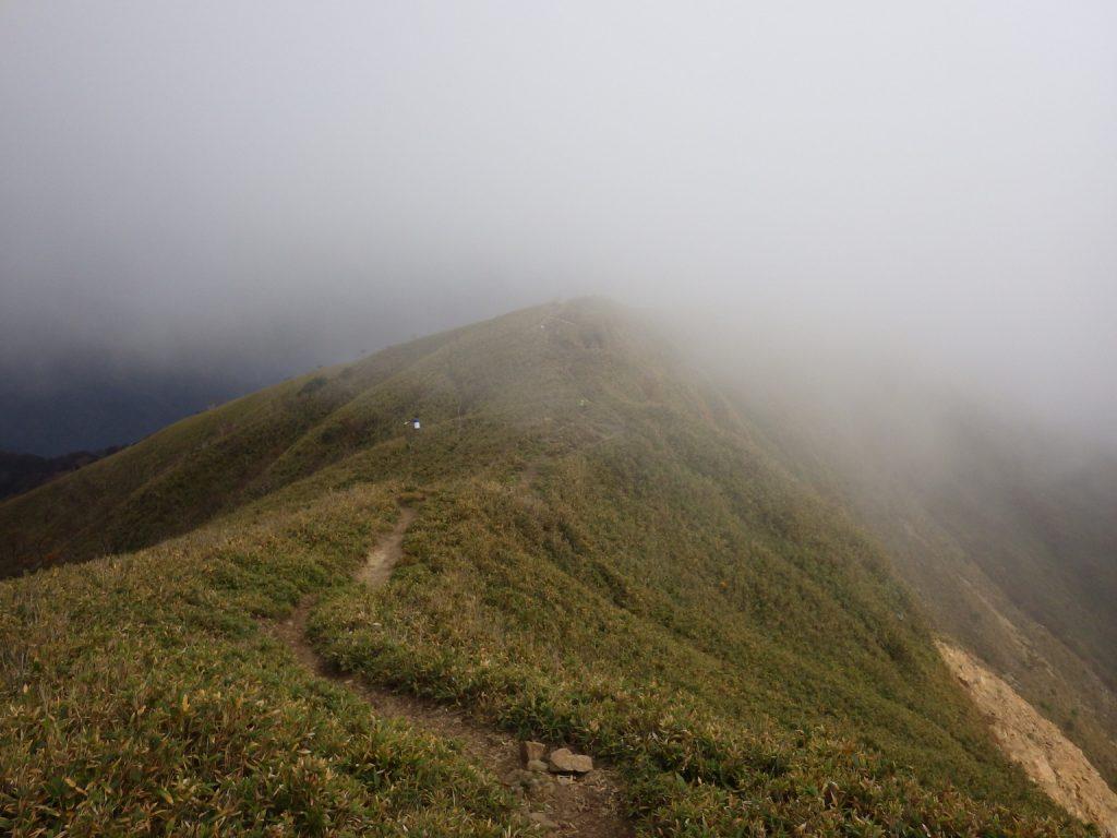 竜ヶ岳表道登山道 2014年10月26日