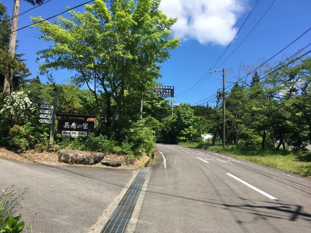 二車線の林道を進む